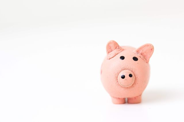 Piggy bank: developers and wages